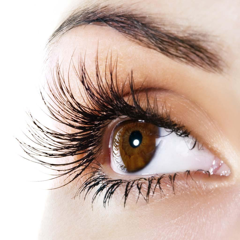 Eyebrow Threading And Shaping And Eyelash Extensions Nitespa